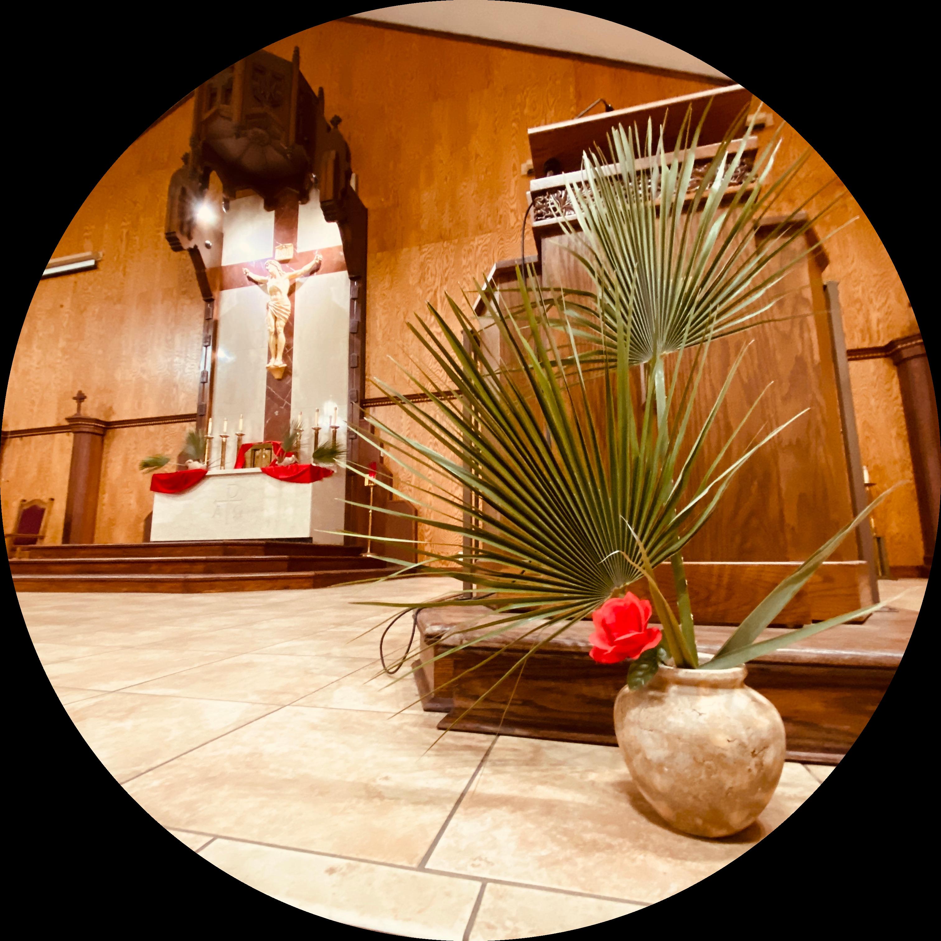 @SaintGeorgeCatholicChurch Profile Image | Linktree