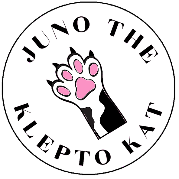 JUNO THE KLEPTO CAT - Cattitude Daily