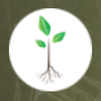 Steve McDonald Entheogenesis Australis: Planting seeds for earth, body and mind. Link Thumbnail | Linktree