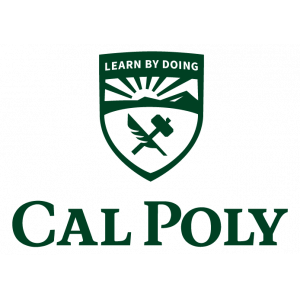 Michael Boyer Inclusive Excellence Council - Cal Poly Office of the President Link Thumbnail | Linktree