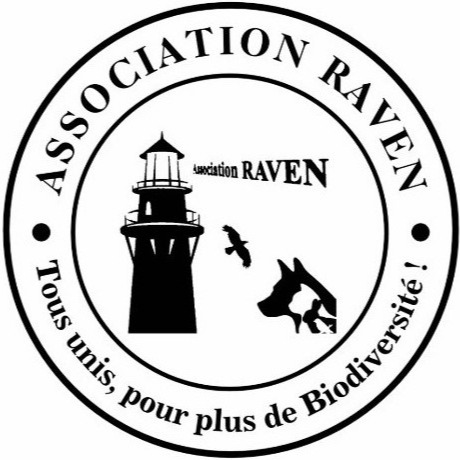 Association RAVEN (Raven.Sanctuary) Profile Image   Linktree