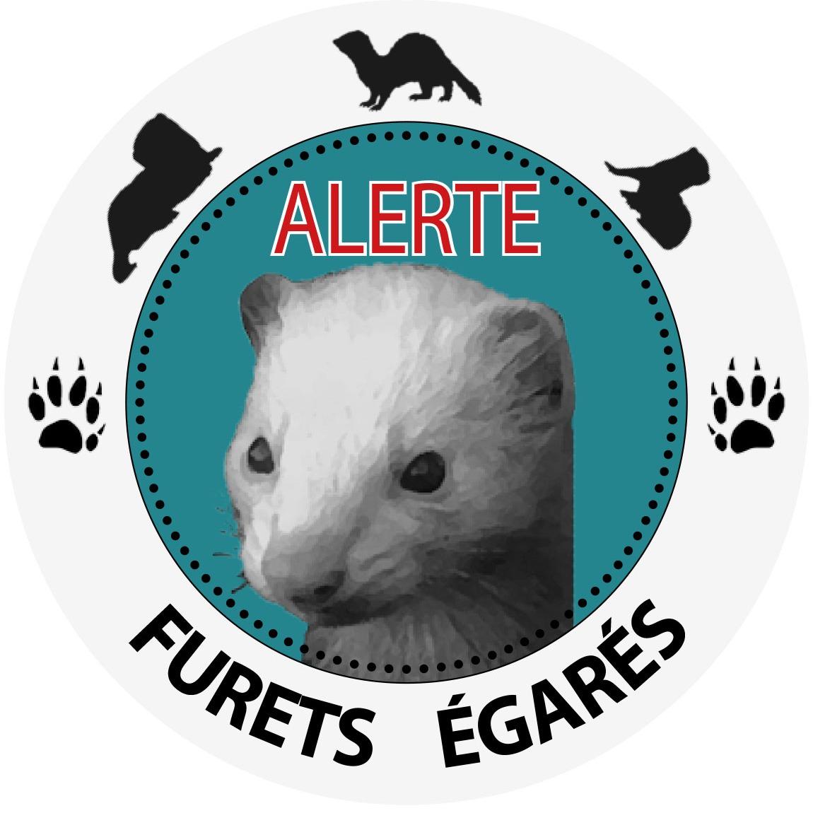 @Alerte.furets.egares Profile Image | Linktree