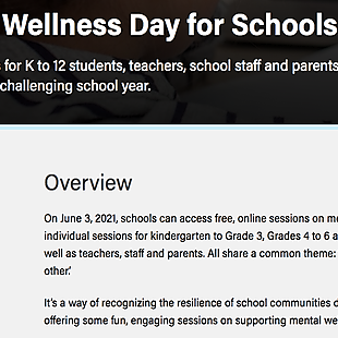 Mental Wellness Day  for Schools/ June 3rd