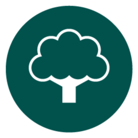 We need trees! Climate-Ready Trees Link Thumbnail | Linktree