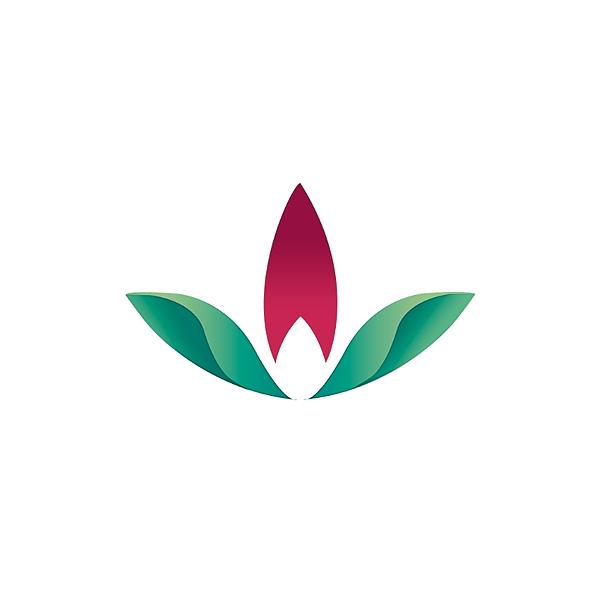 @farmaciadrogarema Profile Image | Linktree