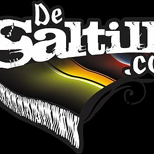DeSaltillo.com