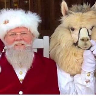 """Alpacas Make You Smile®"" Photos with Santa, Mrs Claus & Alpacas Link Thumbnail | Linktree"