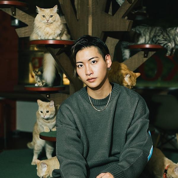 @KentoYamada 3rd sg「犬と猫と」 Link Thumbnail   Linktree
