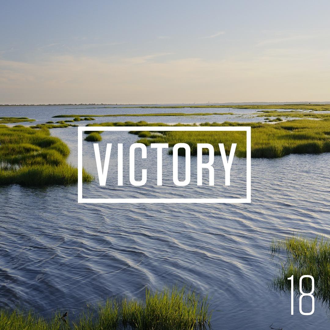 Victory in Virginia