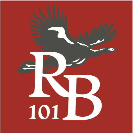 Rare Bird 101 (rarebird101) Profile Image | Linktree