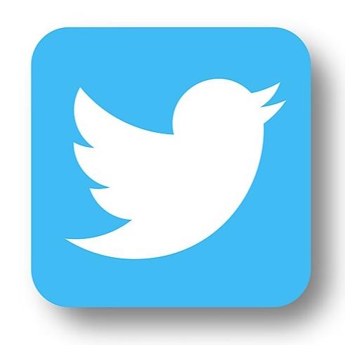 🌍 Twitter Link Thumbnail   Linktree