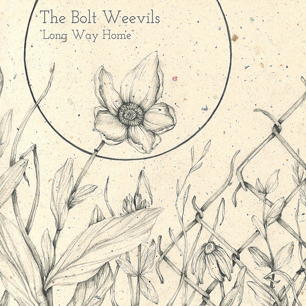 Willow Waters The Bolt Weevils [folk] Link Thumbnail   Linktree