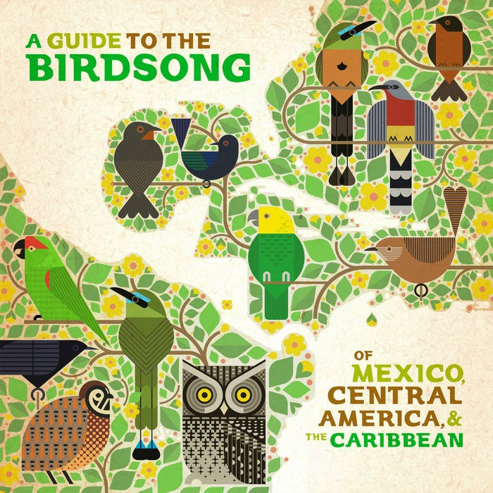 A Guide to the Birdsong Read about the project Link Thumbnail | Linktree