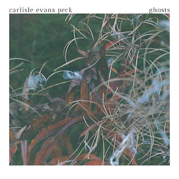 Willow Waters Carlisle Evans Peck [art folk] Link Thumbnail   Linktree