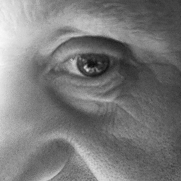 Simon Ryder (simonryder) Profile Image | Linktree