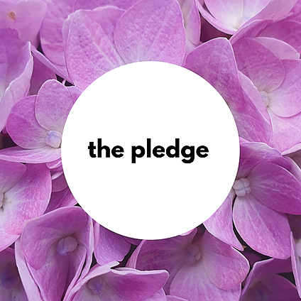 @mhir The Pledge Link Thumbnail   Linktree
