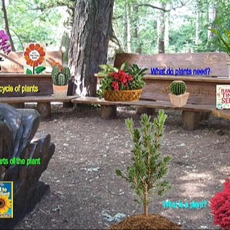 @RebeccaAllgeier Life Cycle of a plant Link Thumbnail | Linktree