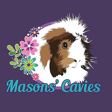 @Masonscavies Profile Image | Linktree