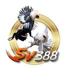 BANDAR SV388 TERBAIK RIVALBET (sv388rival) Profile Image   Linktree