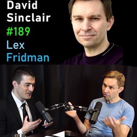 @lifespanbook Lex Fridman June 2021 Link Thumbnail   Linktree