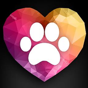 Author & Pet Loss Specialist (karenandersonpetloss) Profile Image | Linktree