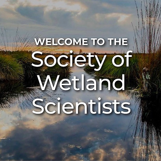 @goswampy Society of Wetland Scientists Link Thumbnail   Linktree