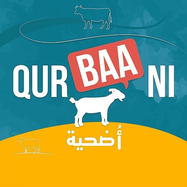 Minhaj-ul-Quran NL Qurbani via MWF Link Thumbnail | Linktree