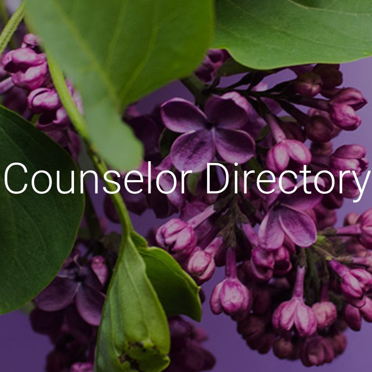 Certified IE Counselor Directory