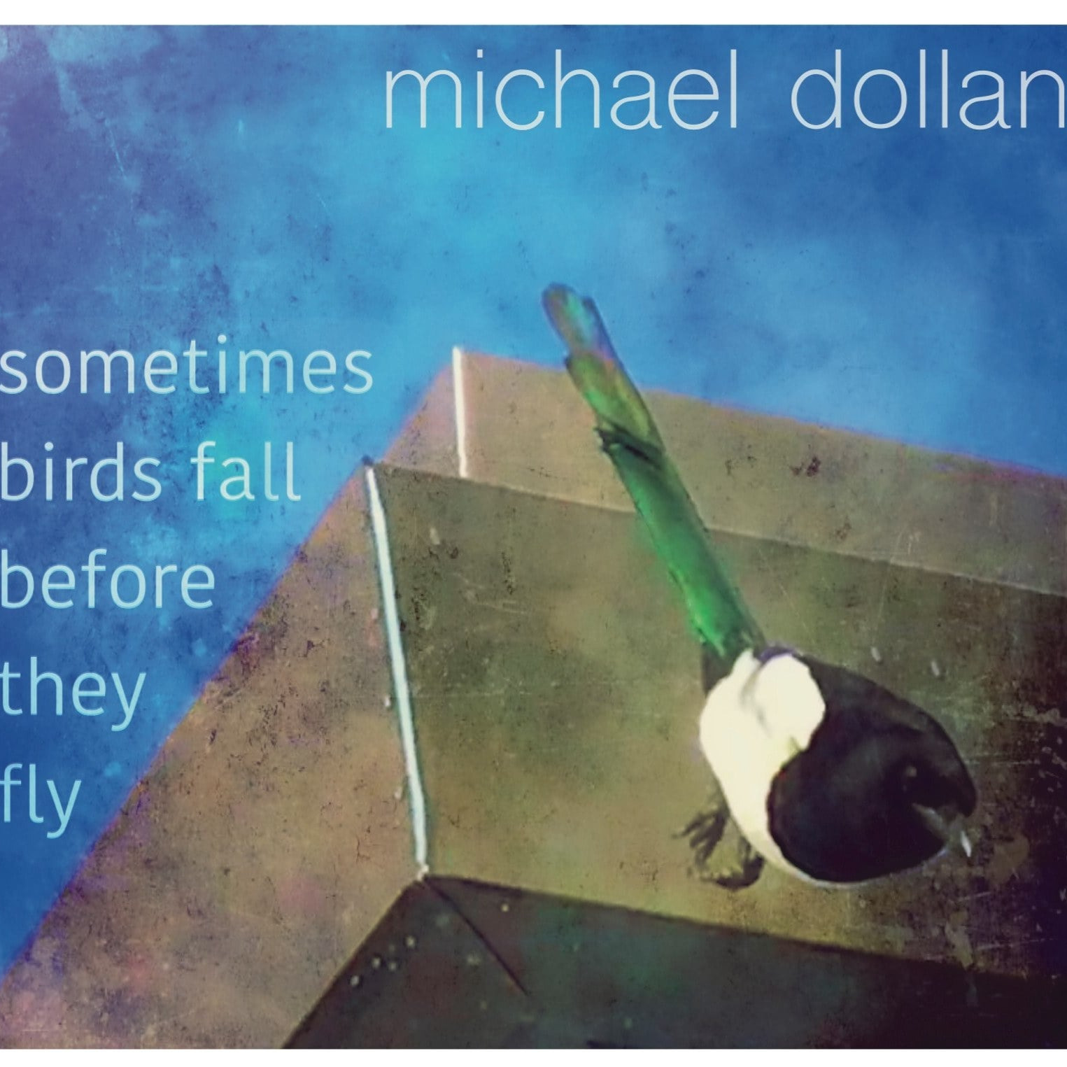 michael dollan music EP - sometimes birds fall before they fly  Link Thumbnail | Linktree