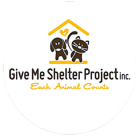 Give Me Shelter Project (givemeshelterproject) Profile Image | Linktree