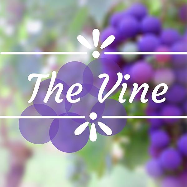 Latest Video: The Vine
