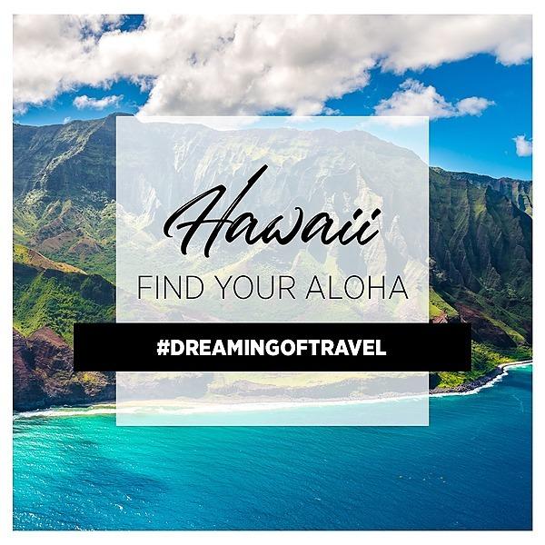 @wanderwithchelsea Hawaii Alternative Ground Transportation Options Link Thumbnail | Linktree