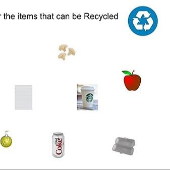 @RebeccaAllgeier The Environment Link Thumbnail | Linktree