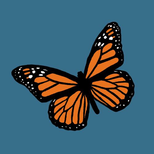 Set Free Ministries (SetFreeMinistries) Profile Image | Linktree