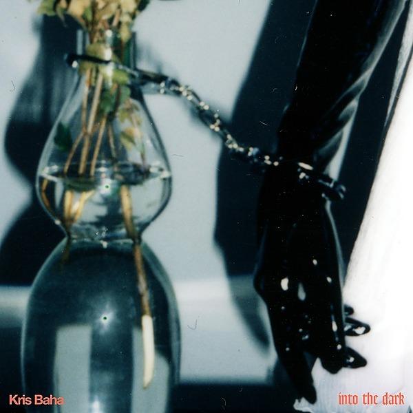 @krisbaha Into The Dark Spotify  Link Thumbnail | Linktree