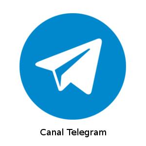 TELEGRAM- FIEP BRASIL