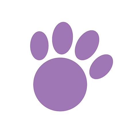 @projetogramacho Profile Image | Linktree