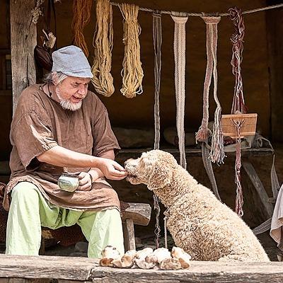 Linktree VierVoeterVriendelijk Hond mee - museum 🐾 Link Thumbnail | Linktree
