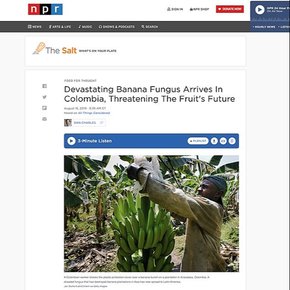 Featured in NPR Panama Disease
