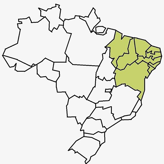 @leipaulogustavo Região Nordeste Link Thumbnail | Linktree