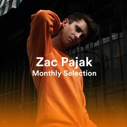@zacpajak Monthly Selection Playlist Link Thumbnail | Linktree