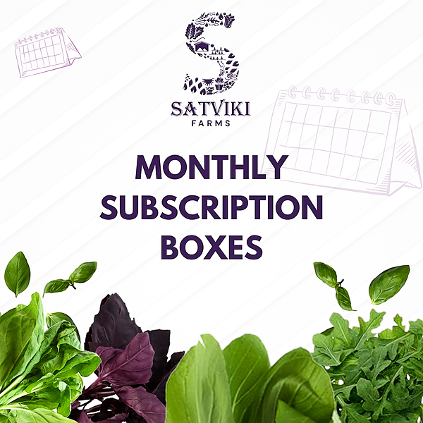 Satviki Farms Subscribe to our Harvest Boxes Link Thumbnail | Linktree
