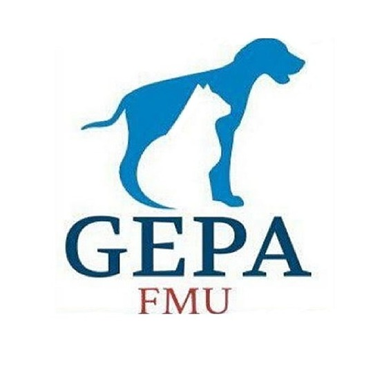 GEPA - FMU (GEPA.FMU) Profile Image   Linktree