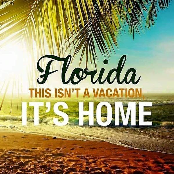 @floridadelfin Florida_News Link Thumbnail | Linktree