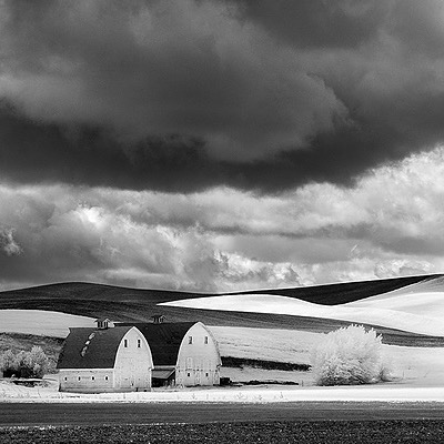 @barclayphoto LifePixel for Infrared Conversions - This is who I use Link Thumbnail | Linktree