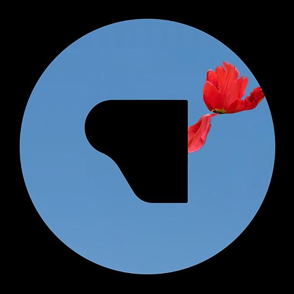@Pensieri.Isolati Profile Image | Linktree