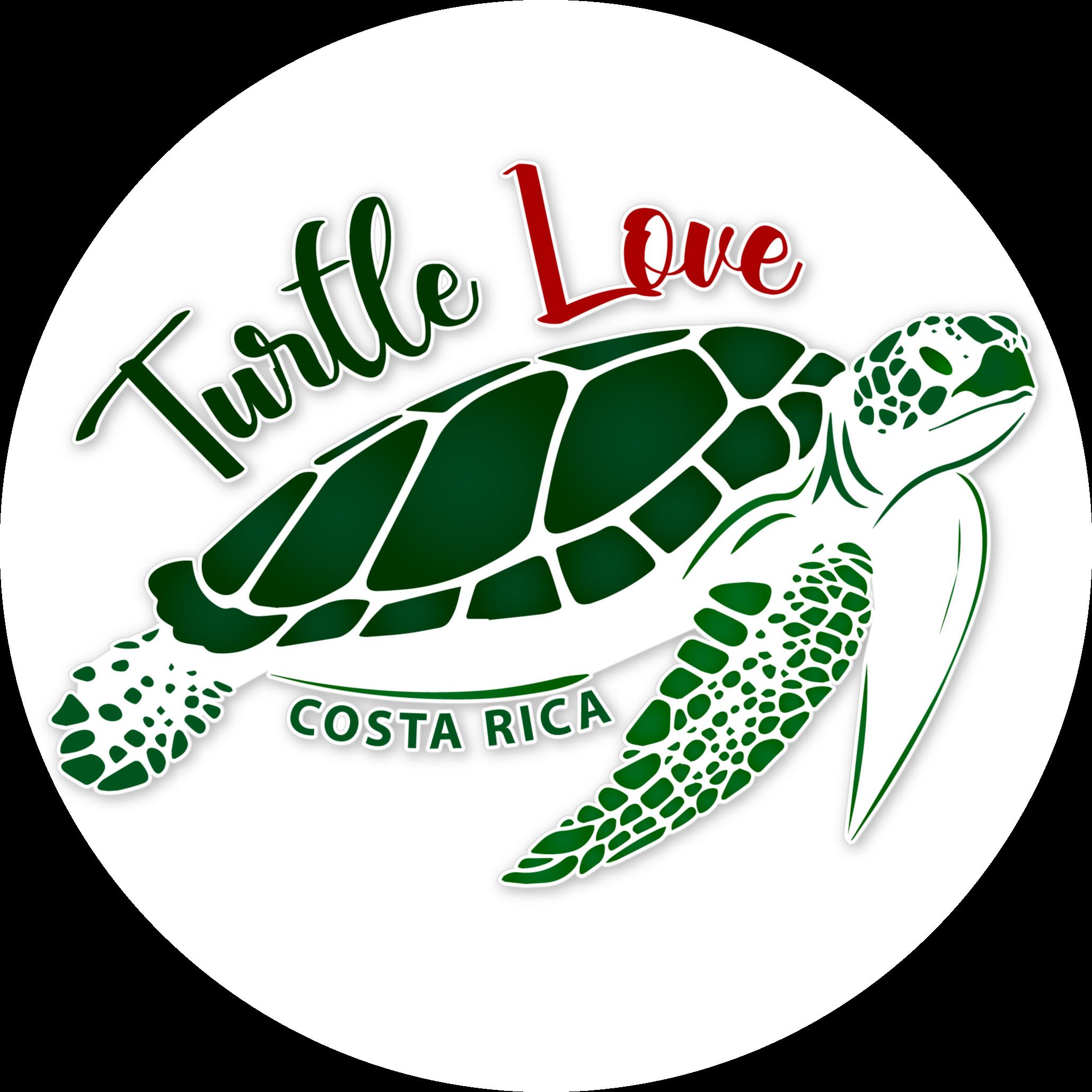 @turtlelove Profile Image | Linktree