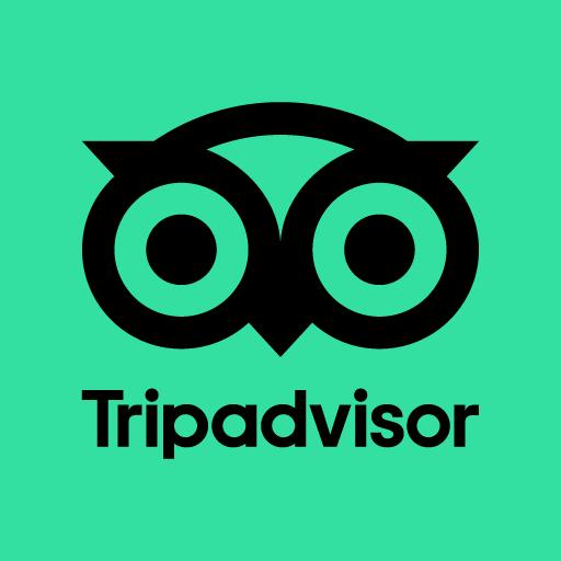 Hamish the Guide Tripadvisor Link Thumbnail   Linktree