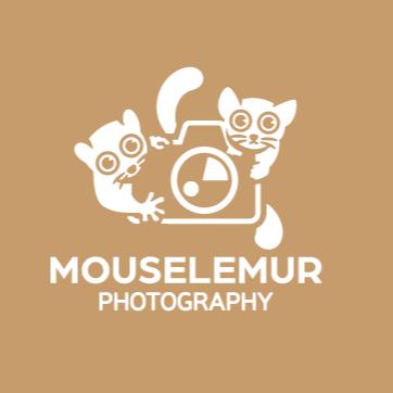 Mouselemur Photography (MouselemurPhotography) Profile Image   Linktree