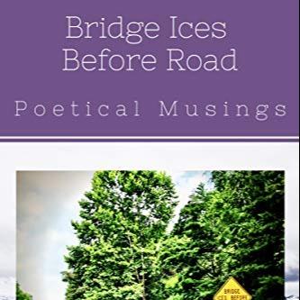 @lbsedlacek Bridge Ices Before Road Link Thumbnail   Linktree